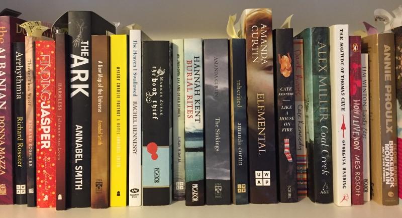 IMG_2760 Amanda Curtin's books
